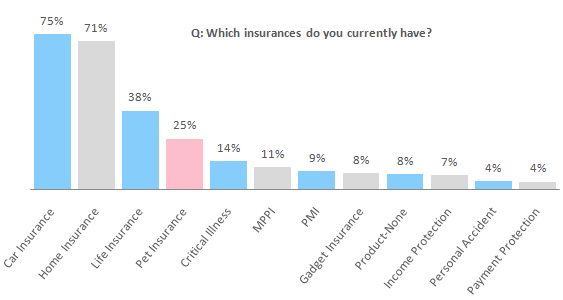 Q: Which insurances do you currently have?