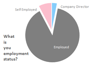 Q. What is your employment status